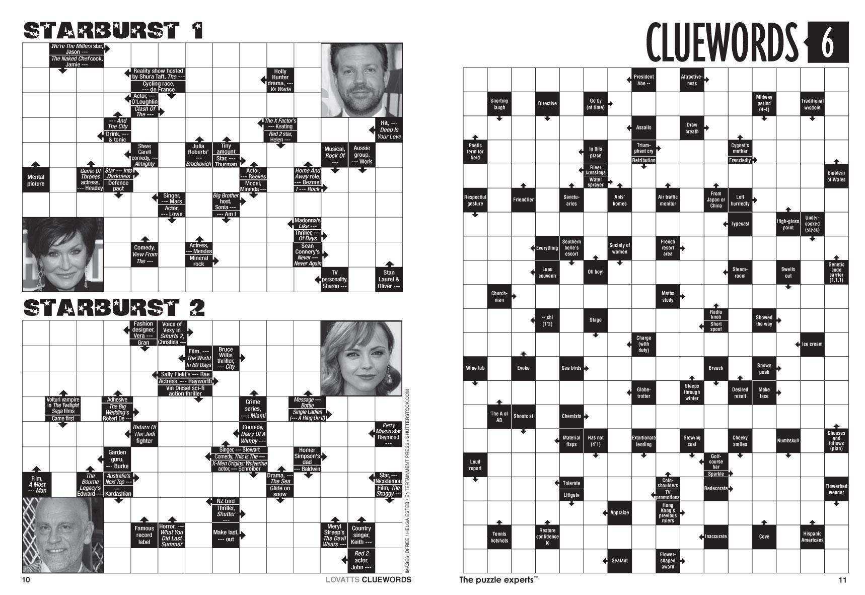 Car Wheel Cover Crossword Clue